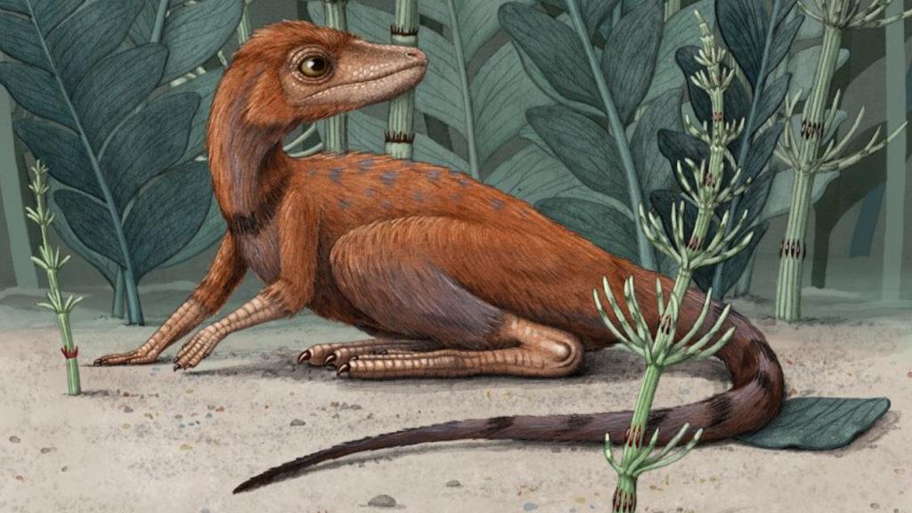 Dinosaurus Voorouder Mini Kongonaphon