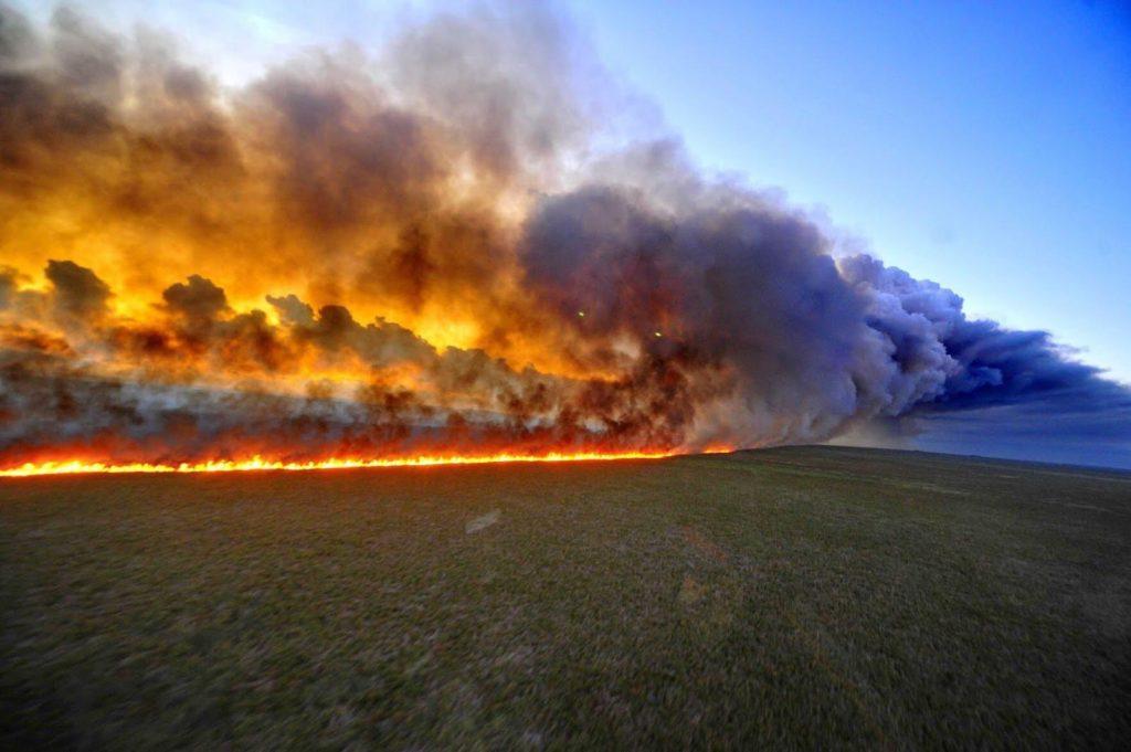 Amazonewoud Bosbranden
