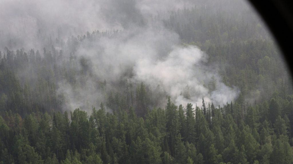 bosbranden Siberië hitte